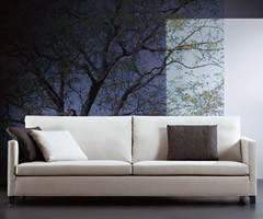 ¿Cuántos tipos de sofás existen?